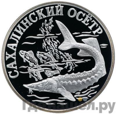 Аверс 1 рубль 2001 года СПМД
