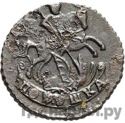 Реверс Полушка 1795 года   Без обозначения монетного двора