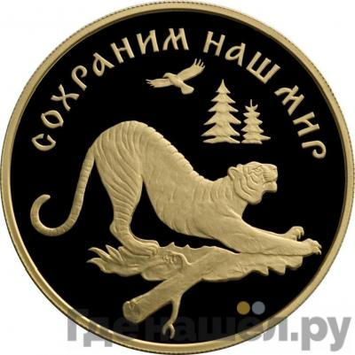 Аверс 100 рублей 1996 года ЛМД Сохраним наш мир амурский тигр золото