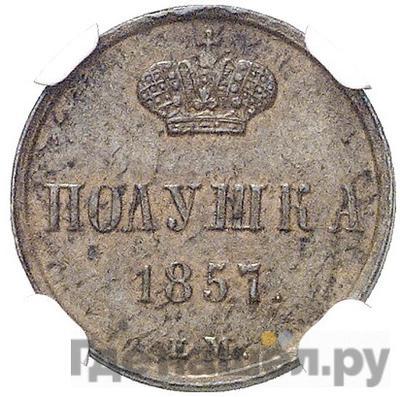 Аверс Полушка 1857 года ЕМ