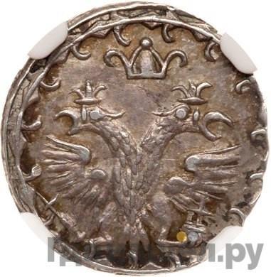 Реверс 10 денег 1702 года