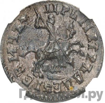 Реверс 1 копейка 1713 года НД  Всадник на вздыбленном коне разделяет надпись
